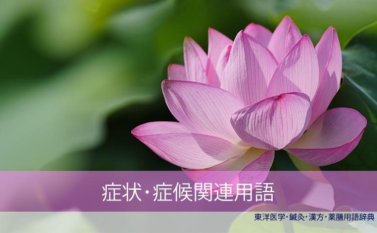 症状症候用語C)東洋医学・鍼灸・漢方辞典dictionary oriental medicine