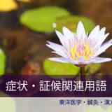 症状証候名用語C)東洋医学・鍼灸・漢方辞典dictionary oriental medicine