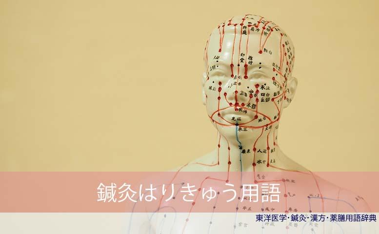 鍼灸用語  (C)東洋医学・鍼灸・漢方辞典dictionary oriental medicine